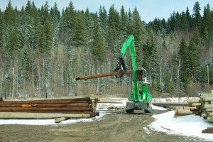 The stability and smooth pulling power of the 830 M-T is well suited to the 1/2 mile circuits in the log yard.